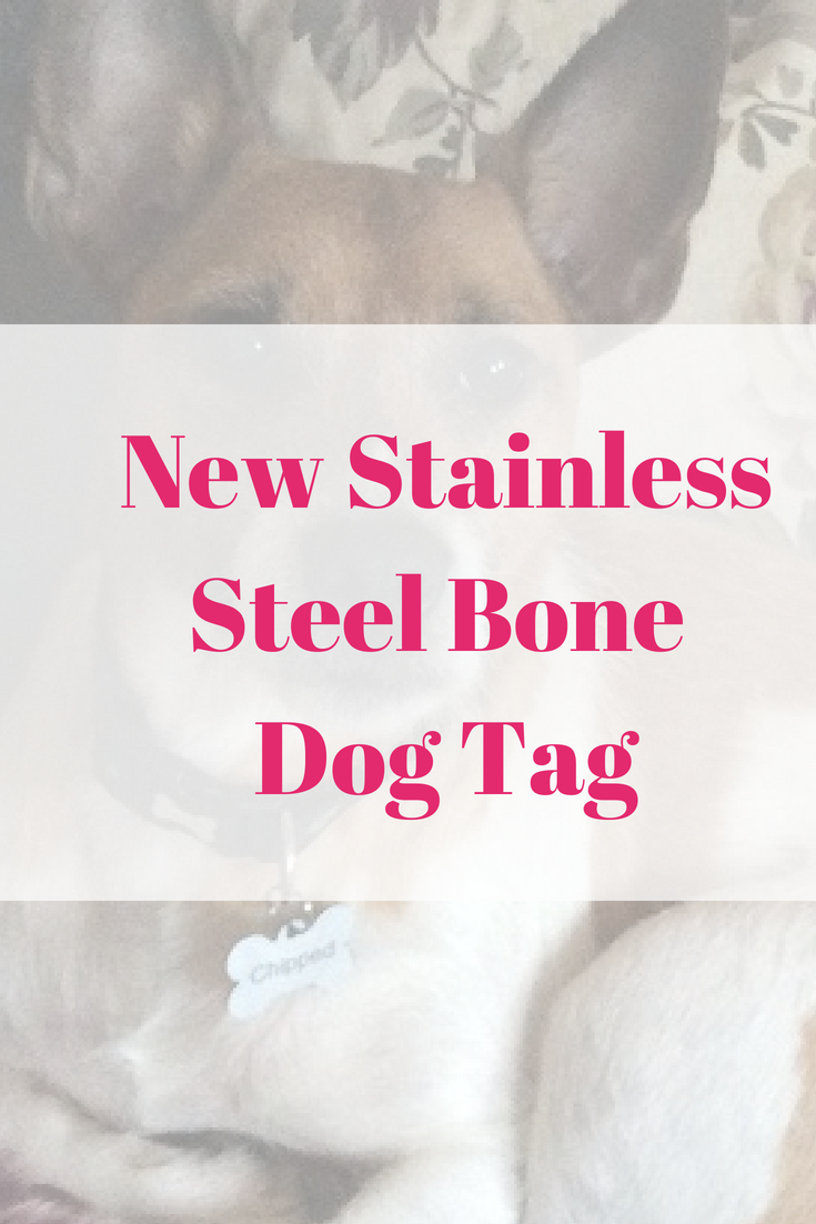 New Stainless Steel Bone Dog Tag