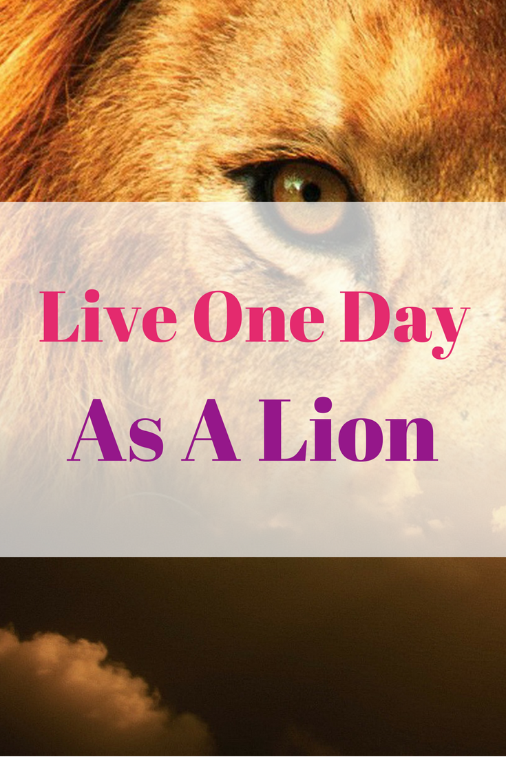 Live One Day As A Lion