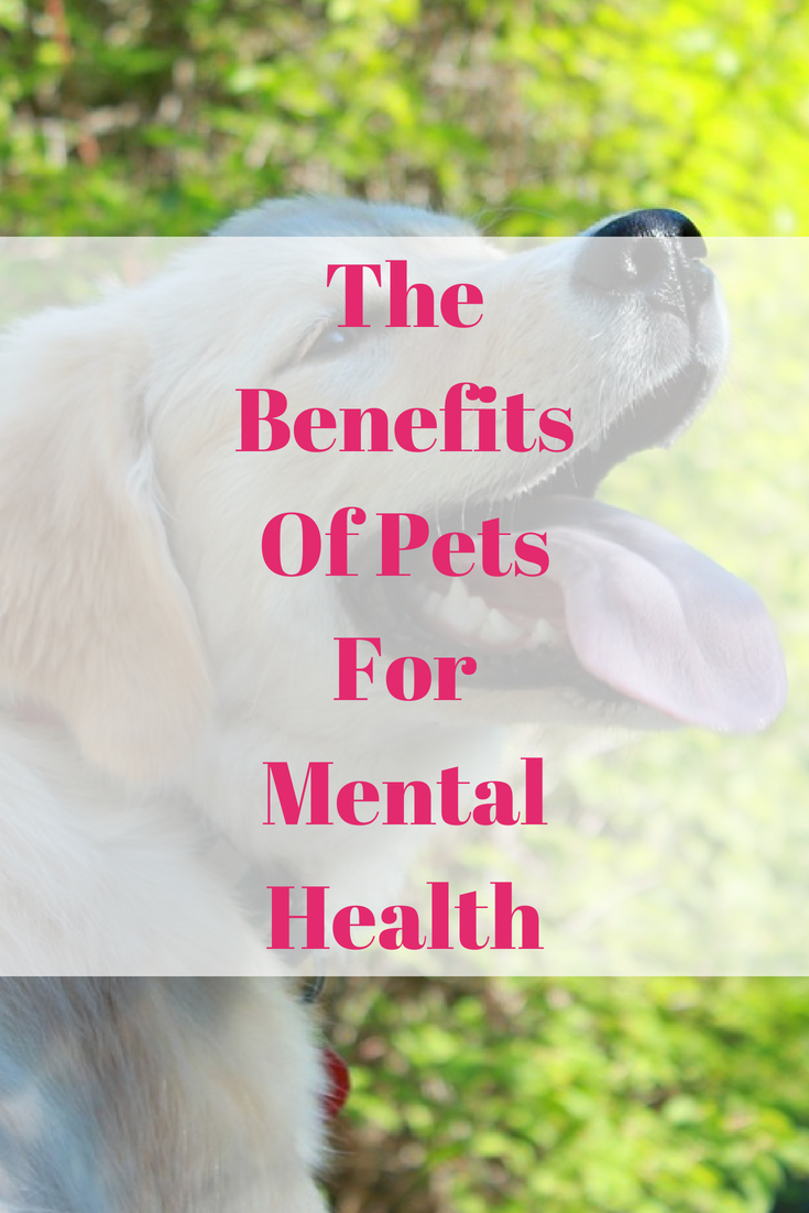 The Benefits Of Pets For Mental Health
