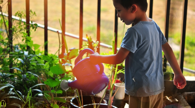 How to Make Your Garden a Kids' Paradise This Spring