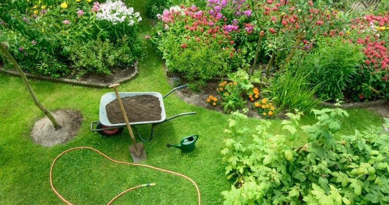Prepping your garden for Summer
