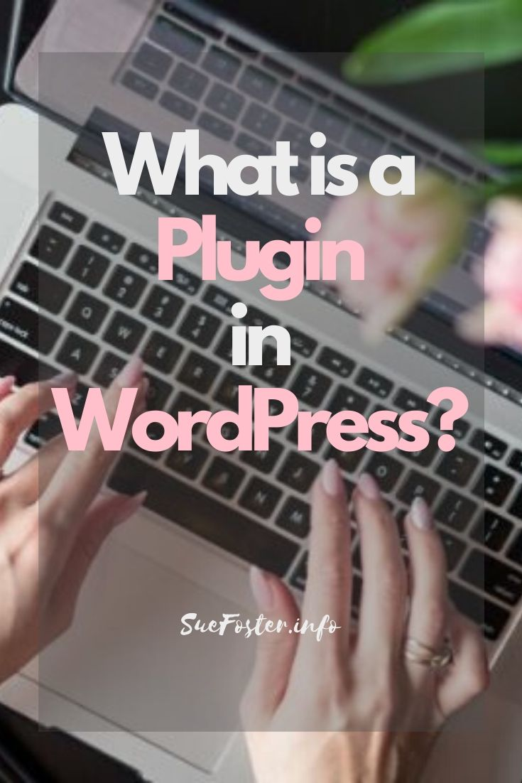 What is a plugin in WordPress?