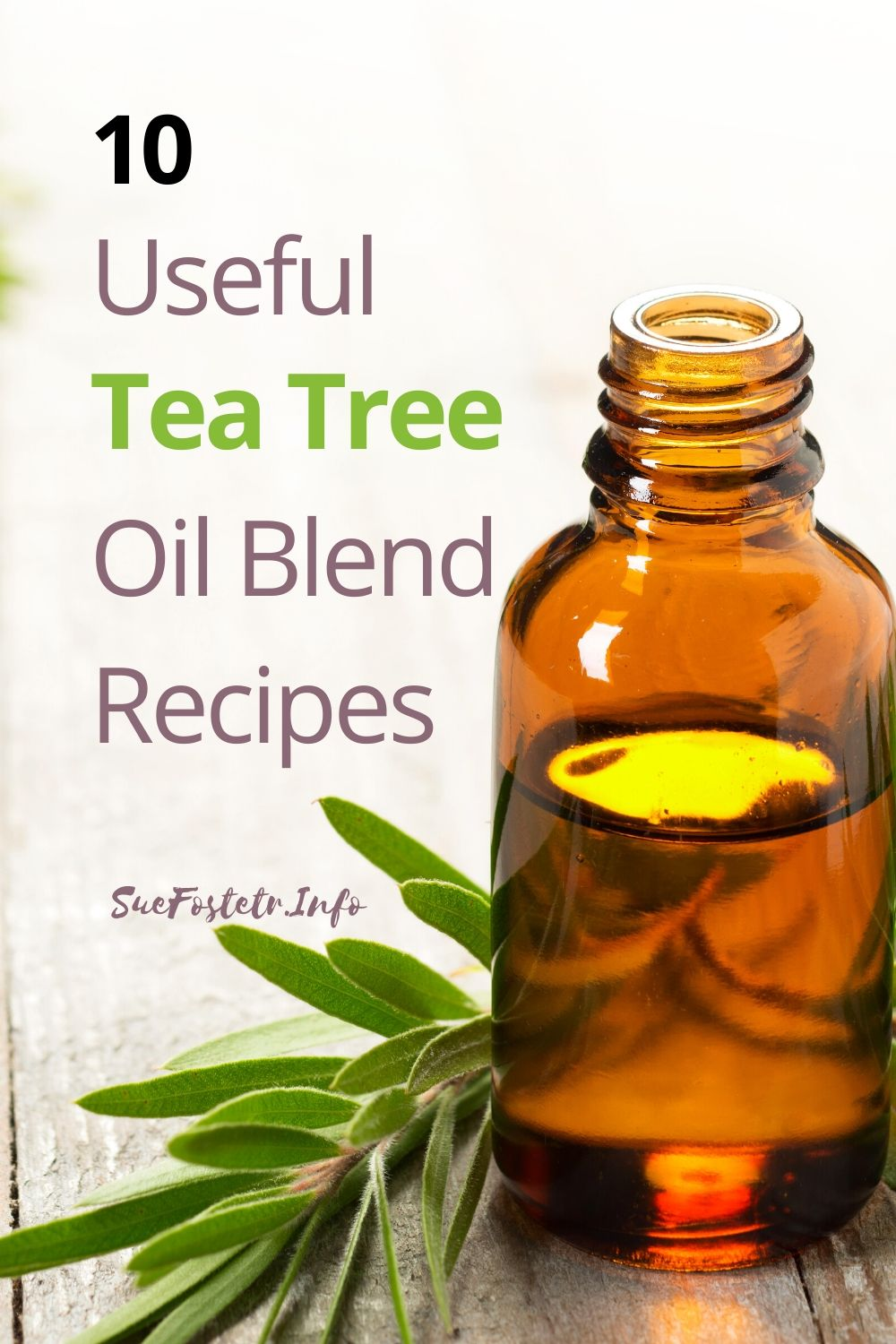 10 useful tea tree oil blend recipes that are so simple to make with very few ingredients.