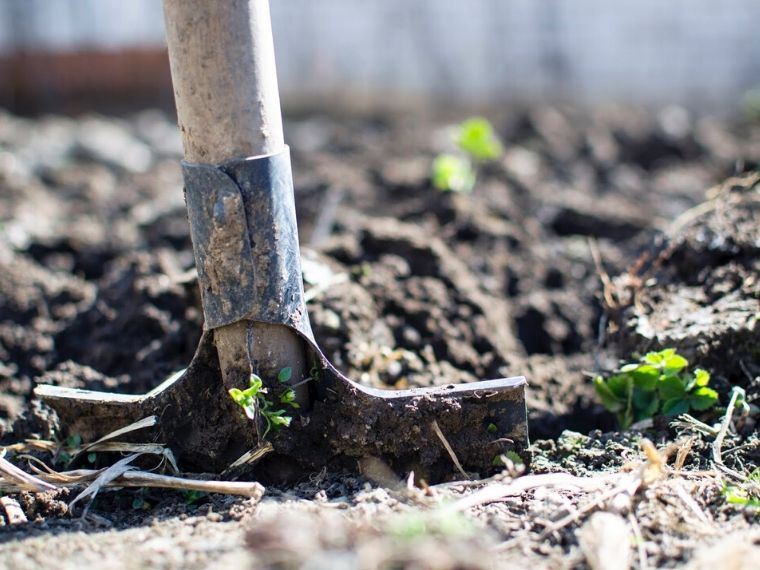 Gardening For Sustainable Living