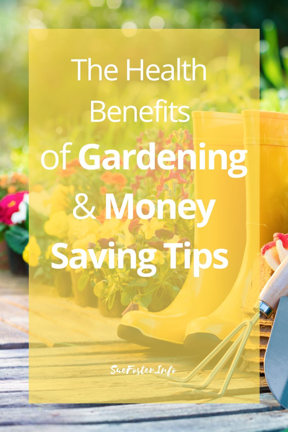 Having a garden whether it be outdoors or indoors can provide a place of sanctuary and well-being and help take your mind off things. With money being in short supply for many people, here are some tips to help you save you money when creating your little space of heaven.