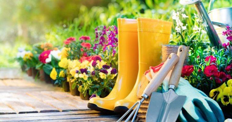 The Health Benefits of Gardening & Money Saving Tips