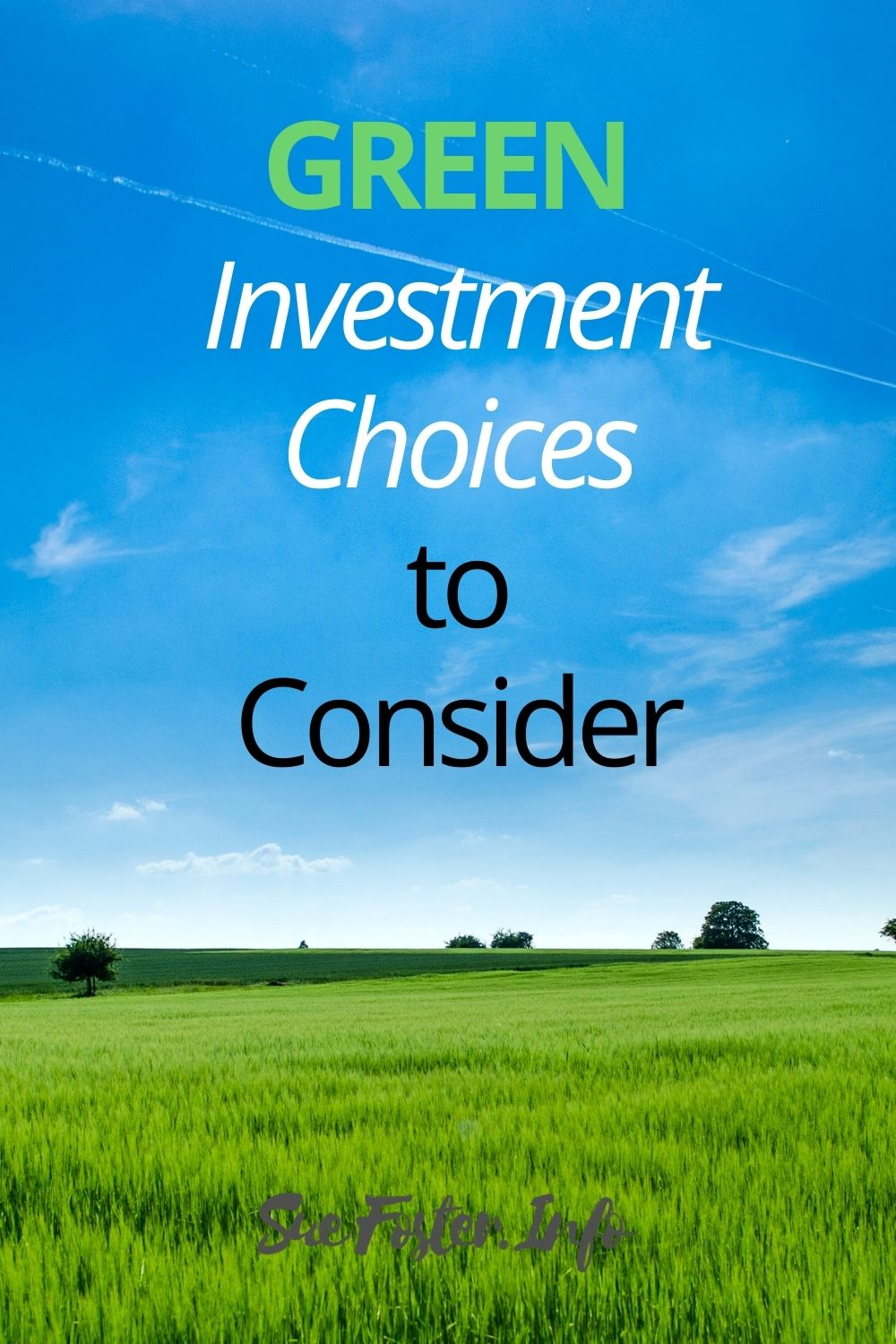 Green investment choices to consider