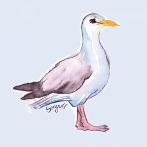 Seagull Notebook, Journal Containing 100 Lined Pages with a Seagull Image on Each One.