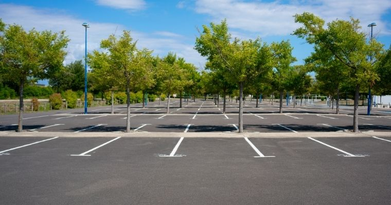 A tree-lined parking lot