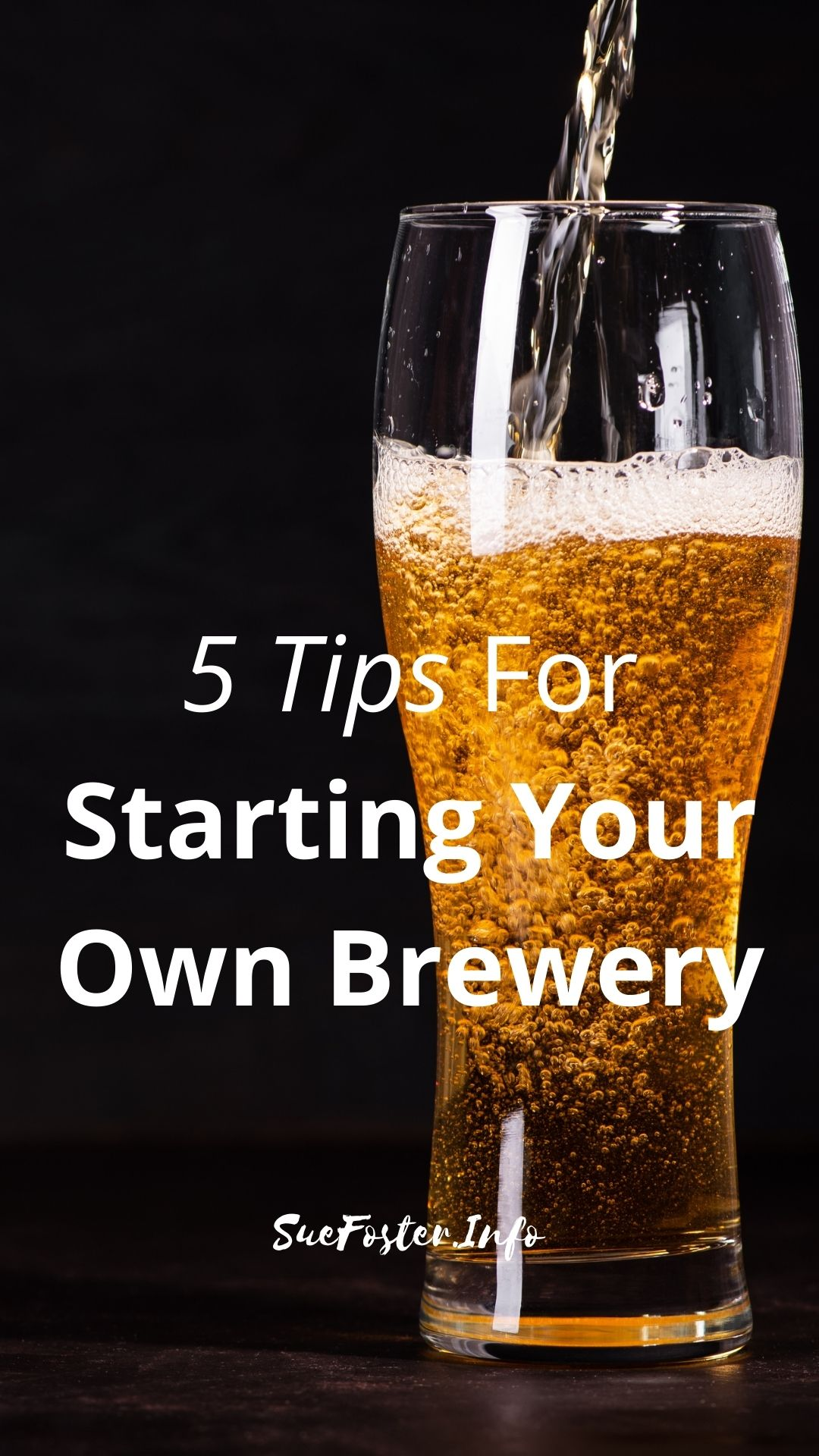 If the idea of setting up your own nano or micro-brewery sounds like heaven, then check out these tips.